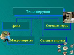 Сетевые червь Типы вирусов файл Сетевые вирусы Макро-вирусы