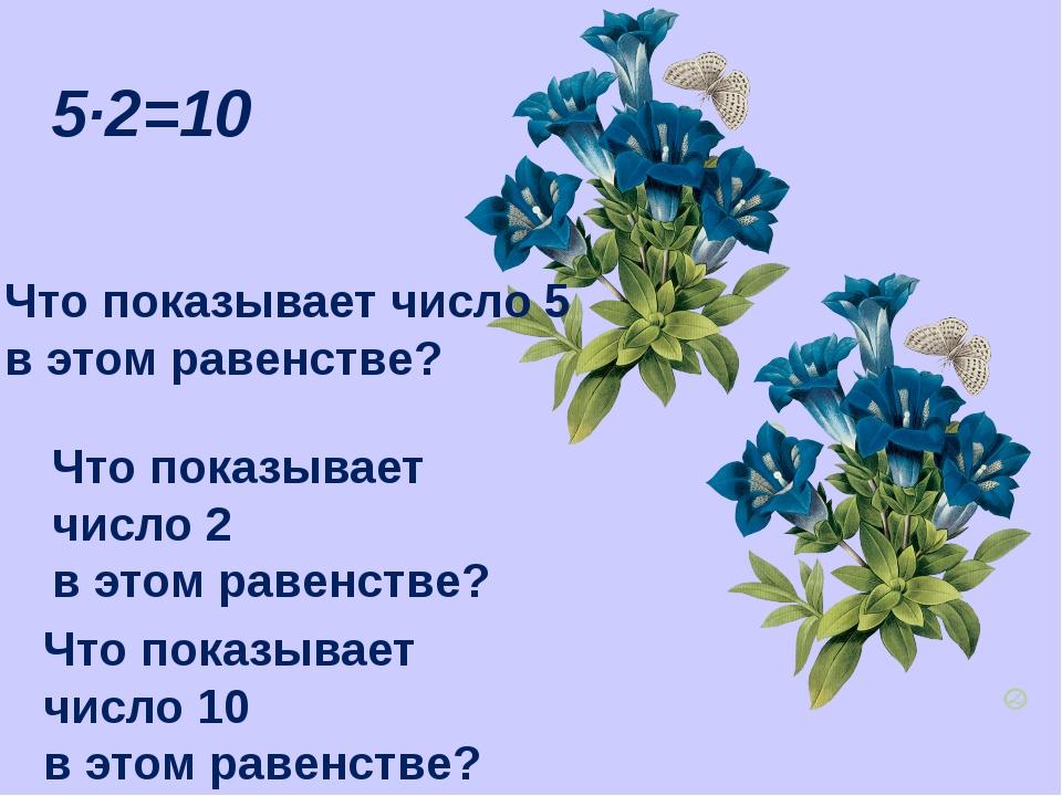 5·2=10 Что показывает число 5 в этом равенстве? Что показывает число 2 в этом...