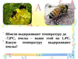Шмели выдерживают температуру до -7,80С, пчелы – выше этой на 1,40С. Какую т
