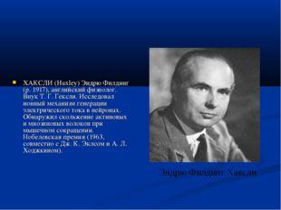 ХАКСЛИ (Huxley) Эндрю Филдинг (р. 1917), английский физиолог. Внук Т. Г. Гекс