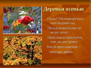 Деревья осенью Осень! Обсыпается весь наш бедный сад, Листья пожелтелые по в