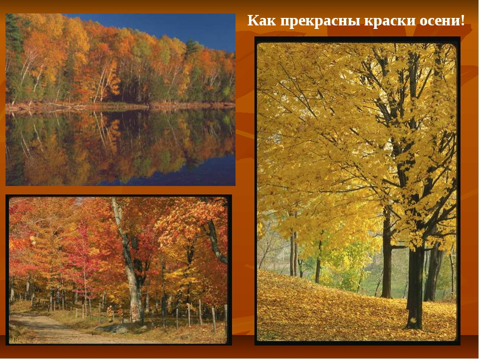 Как прекрасны краски осени!