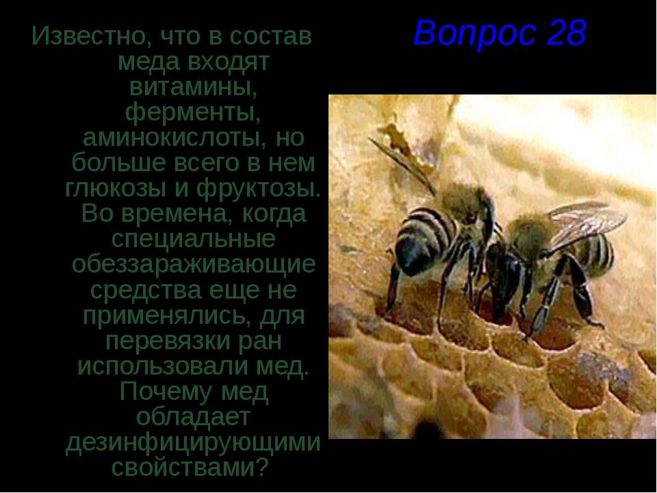 Вопрос 28 Известно, что в состав меда входят витамины, ферменты, аминокислоты...