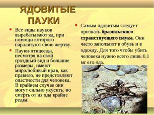 ЯДОВИТЫЕ ПАУКИ Все виды пауков вырабатывают яд, при помощи которого парализу
