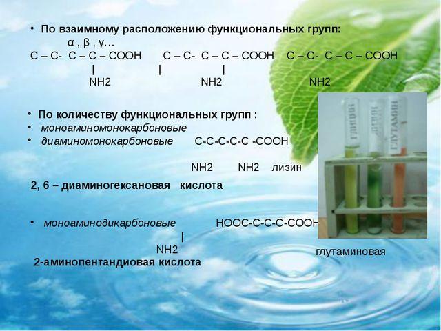 По количеству функциональных групп : моноаминомонокарбоновые диаминомонокарб...