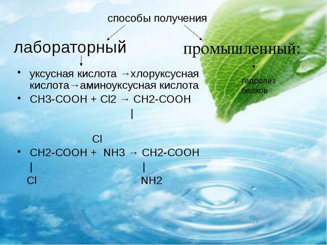 лабораторный  уксусная кислота →хлоруксусная кислота→аминоуксусная кислота С...