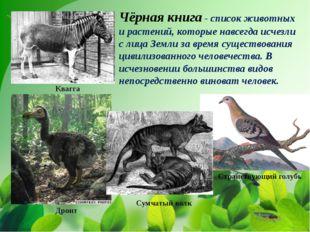 Чёрная книга - список животных и растений, которые навсегда исчезли с лица З