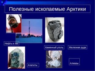 Полезные ископаемые Арктики Нефть и газ Каменный уголь Железная руда Апатиты