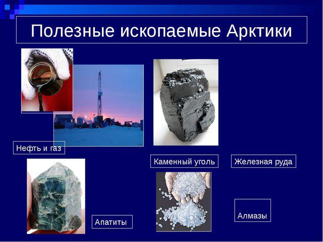 Полезные ископаемые Арктики Нефть и газ Каменный уголь Железная руда Апатиты...