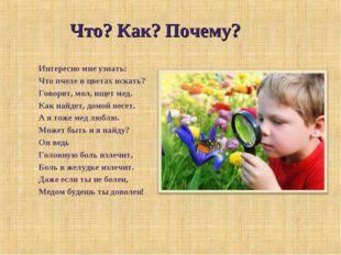 Интересно мне узнать: Что пчеле в цветах искать? Говорят, мол, ищет мед. Как