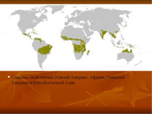 Саванны свойственны Южной Америке, Африке, Северной Америки и Юго-Восточной А