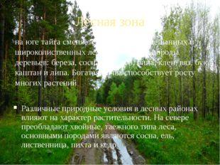 Лесная зона Различные природные условия в лесных районах влияют на характер р