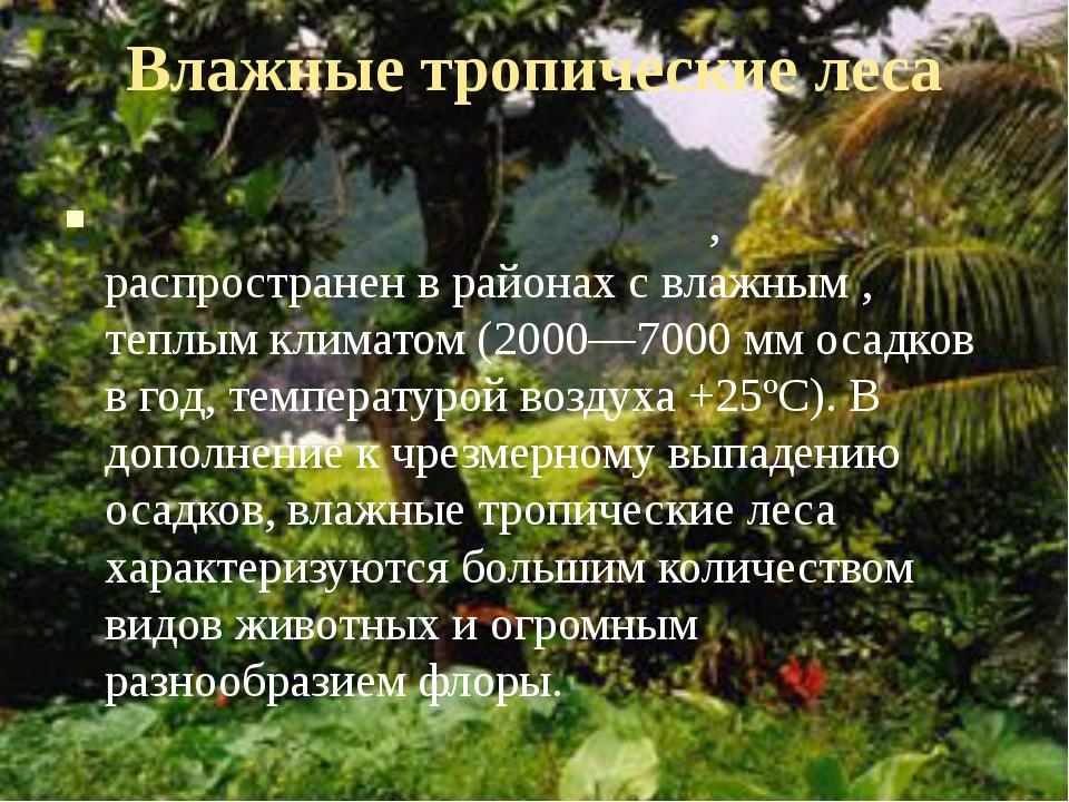Влажные тропические леса Вла́жный тропический лес, распространен в районах с...