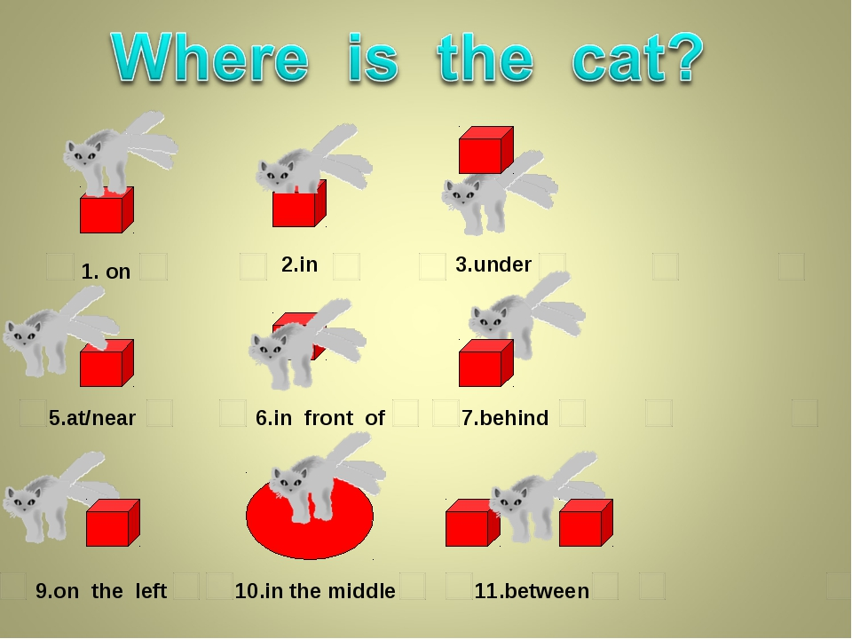 1. on 2.in 3.under 5.at/near 6.in front of 7.behind 9.on the left 10.in the m...