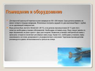 Помещение и оборудование Для взрослой красноухой черепахи нуженаквариумна 1
