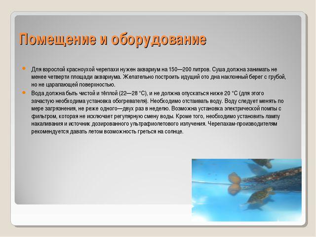 Помещение и оборудование Для взрослой красноухой черепахи нуженаквариумна 1...