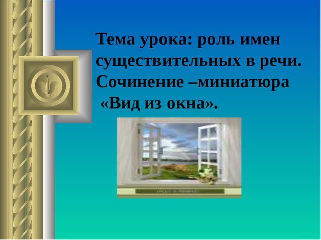 Тема урока: роль имен существительных в речи. Сочинение –миниатюра «Вид из ок...