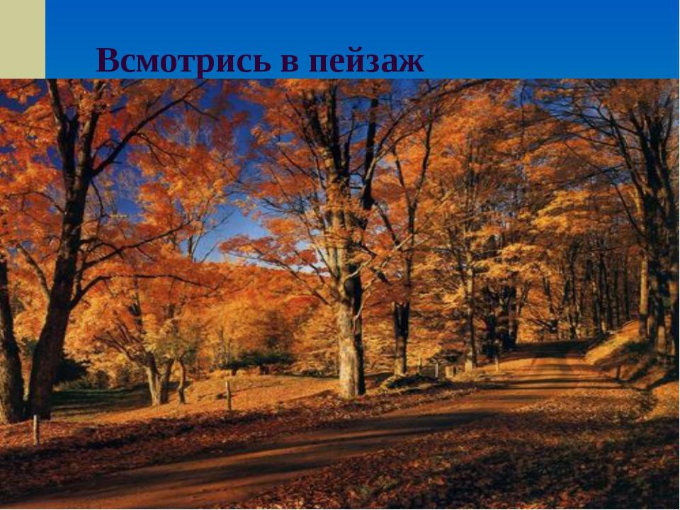 Всмотрись в пейзаж
