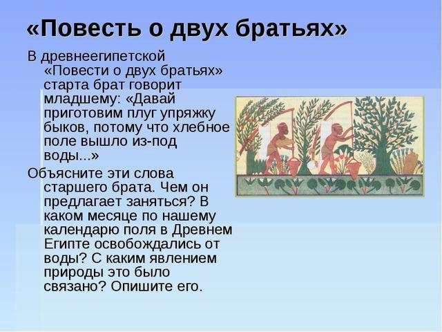 «Повесть о двух братьях» В древнеегипетской «Повести о двух братьях» старта б...