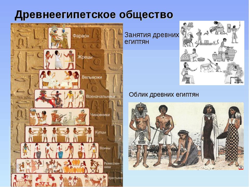 Древнеегипетское общество Занятия древних египтян Облик древних египтян