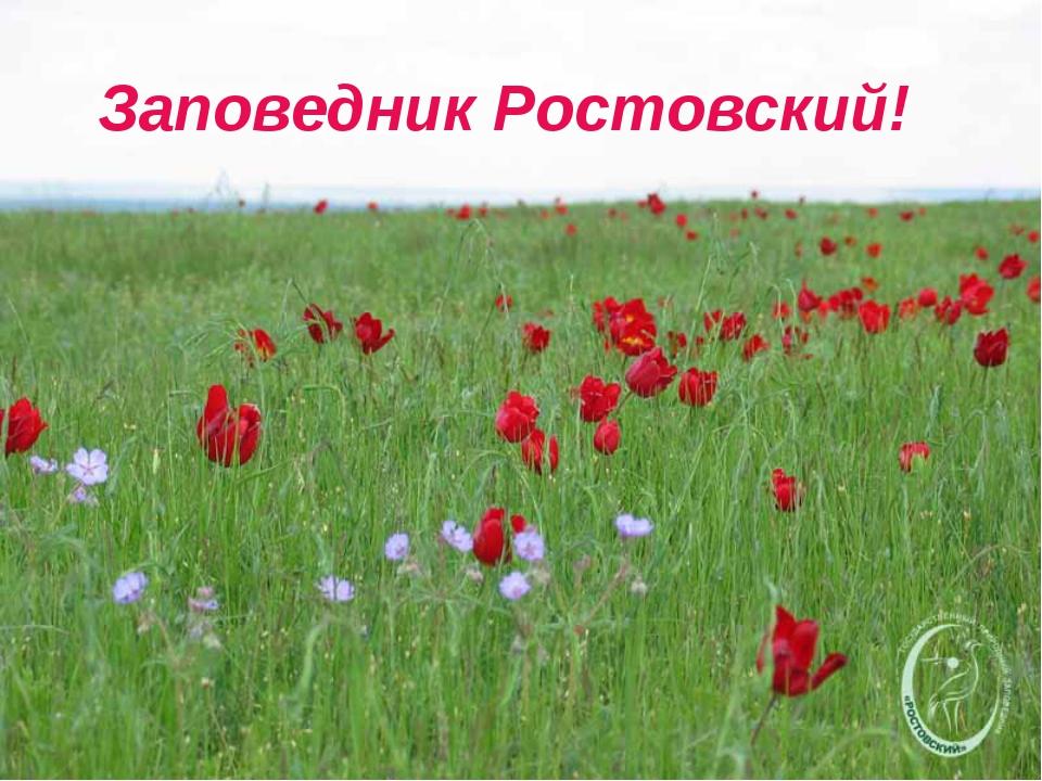 Заповедник Ростовский!