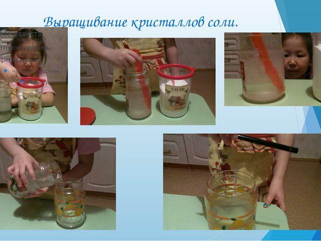 Выращивание кристаллов соли.