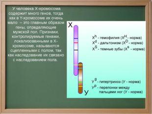 У человека Х-хромосома содержит много генов, тогда как в Y-хромосоме их очен