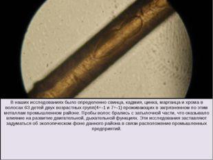В наших исследованиях было определенно свинца, кадмия, цинка, марганца и хро