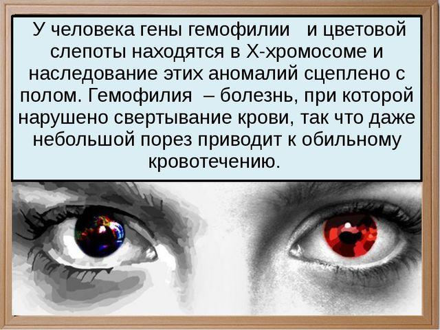 У человека гены гемофилии и цветовой слепоты находятся в Х-хромосоме и насле...