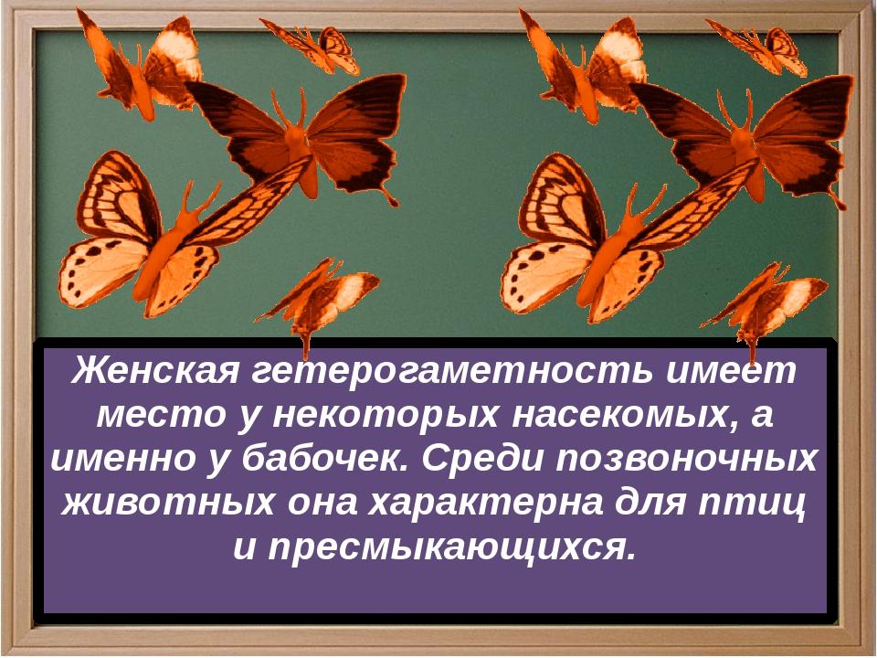 Женская гетерогаметность имеет место у некоторых насекомых, а именно у бабоч...