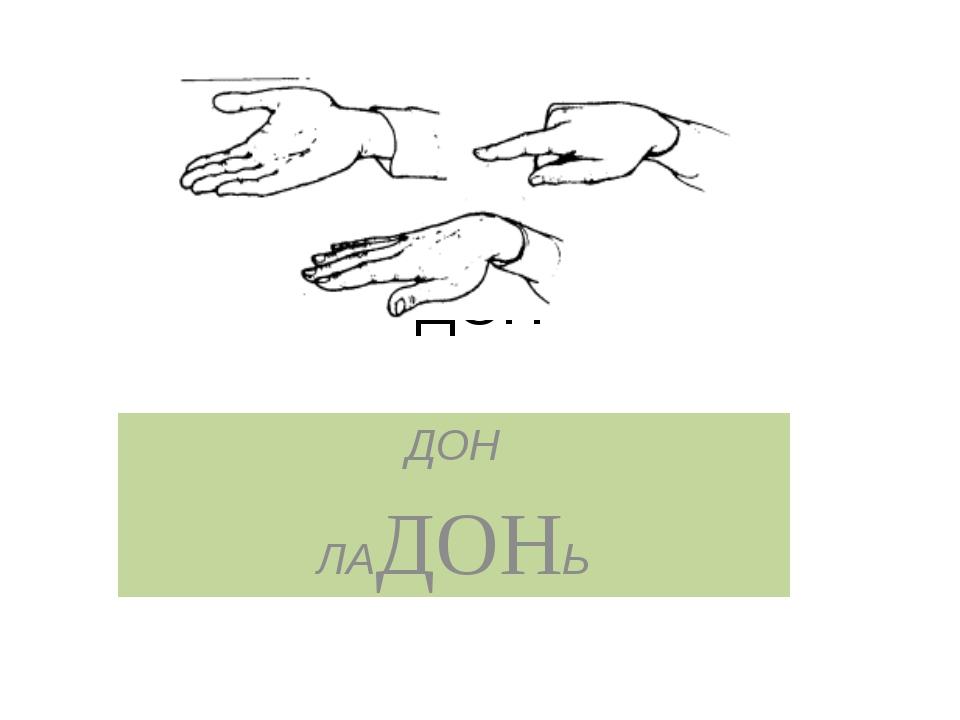 ДОН ДОН ЛАДОНЬ