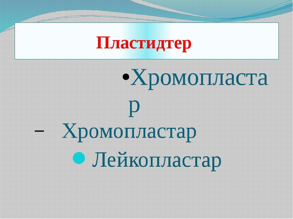 Хромопластар Хромопластар Лейкопластар Пластидтер