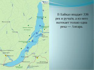 В Байкал впадает 336 рек и ручьёв, а из него вытекает только одна река — Анг