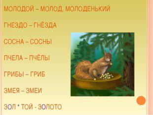 МОЛОДОЙ – МОЛОД, МОЛОДЕНЬКИЙ ГНЕЗДО – ГНЁЗДА СОСНА – СОСНЫ ПЧЕЛА – ПЧЁЛЫ ГРИБ