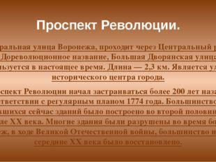 Проспект Революции. Центральная улица Воронежа, проходит через Центральный ра