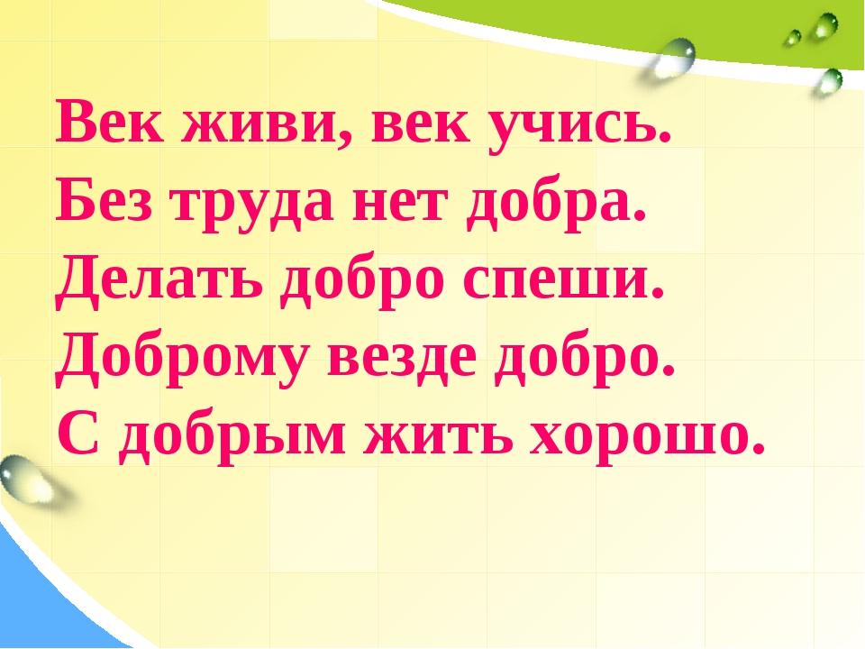 Век живи, век учись. Без труда нет добра. Делать добро спеши. Доброму везде д...