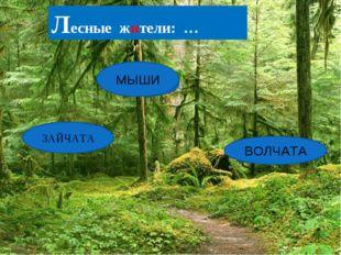 ТАЗАЙЧА ШИМЫ ТАЧАВОЛ ЗАЙЧАТА МЫШИ ВОЛЧАТА Лесные жители: …