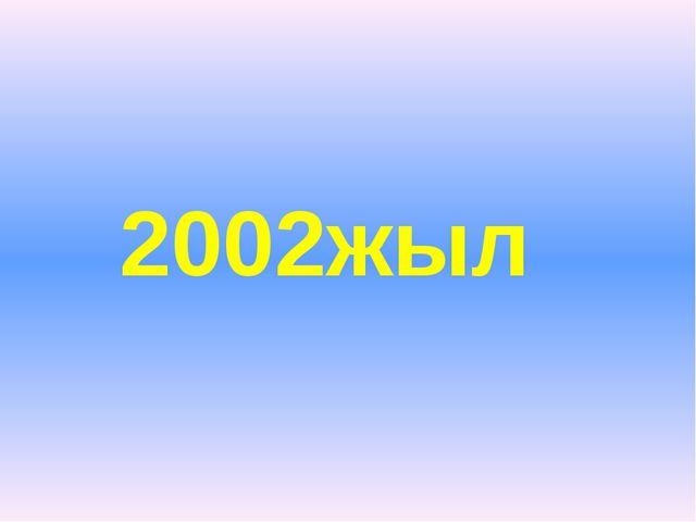2002жыл