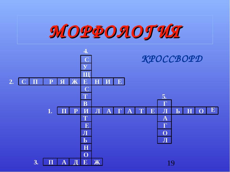 МОРФОЛОГИЯ КРОССВОРД
