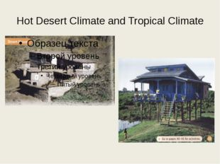 Hot Desert Climate and Tropical Climate