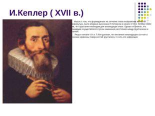 И.Кеплер ( ХVII в.) Мысль о том, что формируемое на сетчатке глаза изображени