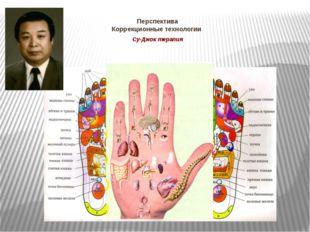 Перспектива Коррекционные технологии Су-Джок терапия Су-Джок терапию разработ