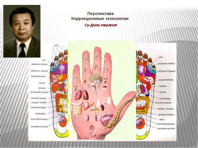 Перспектива Коррекционные технологии Су-Джок терапия Су-Джок терапию разработ...