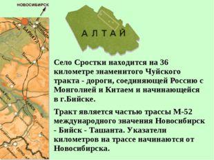 Село Сростки находится на 36 километре знаменитого Чуйского тракта - дороги,