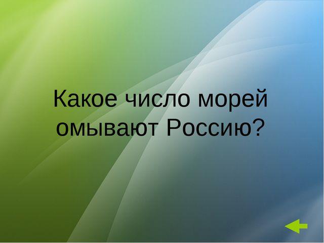 Какое число морей омывают Россию?