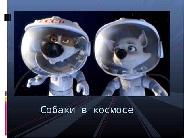 Собаки в космосе