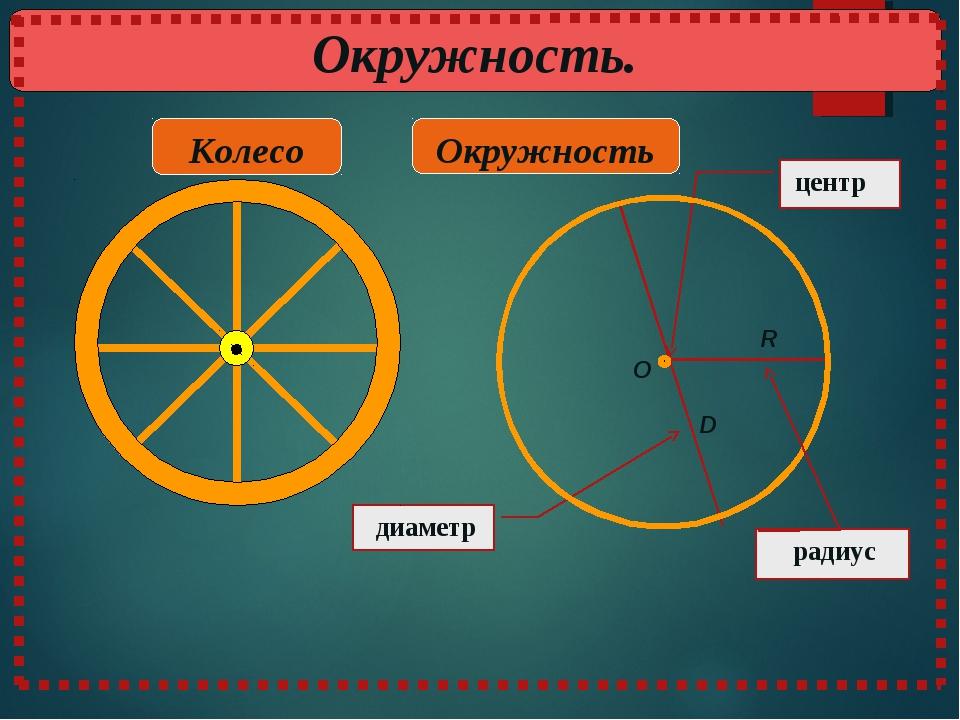 диаметр Окружность Колесо центр R D O радиус Окружность.