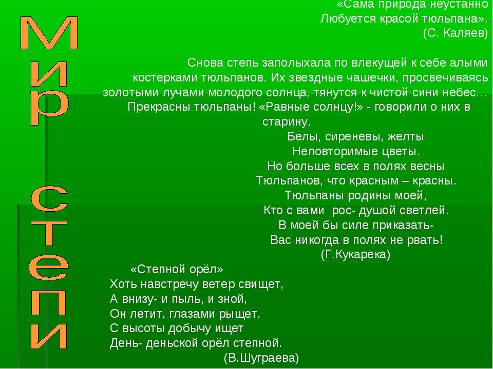 «Сама природа неустанно Любуется красой тюльпана». (С. Каляев) Снова степь...