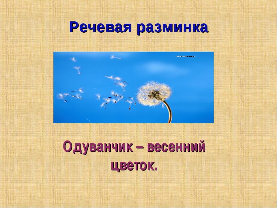 Речевая разминка Одуванчик – весенний цветок.