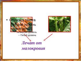 http://aida.ucoz.ru Лечат от малокровия